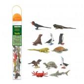 Safari Ltd Figurki Zwierzęta Galapagos