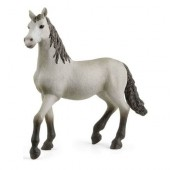 Schleich - Młody koń rasy Hiszpańskiej