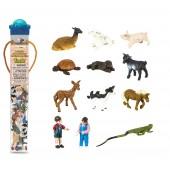 Safari Ltd  Figurki Małe zwierzęta