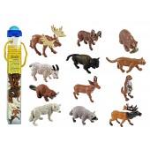 Safari Ltd  Figurki Zwierzęta Ameryka Północna