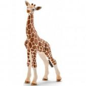 Schleich -  Młoda żyrafa